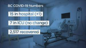 Huge differences between COVID-19 numbers in Canada and the U.S.