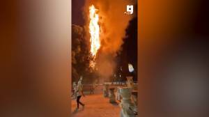 Tree catches fire outside Jerusalem's Al-Aqsa mosque during night of violent clashes (00:45)