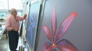 National fundraiser hoping to end mental health stigmas through art (02:23)