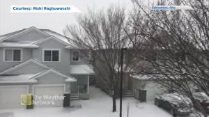 Edmonton hit with November snowstorm
