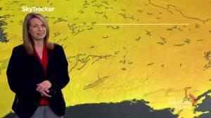 Peterborough Regional Weather Update: May 15, 2020