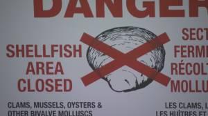 Health Matters: shellfish warning (02:44)