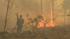 Assessing the wildfire threat as B.C. declares a state of emergency (04:49)