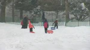 While some Montrealers dig out, others find the snow day's silver lining (01:57)
