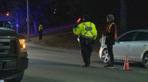 Calgary Police remind drivers about Checkstop Campaign ahead of New Year celebrations