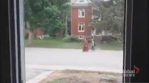 OPP investigating video of man joking about London, Ont. attack (02:09)