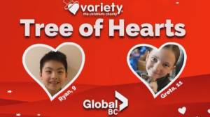 Variety's annual Tree of Hearts fundraiser goes virtual (03:06)