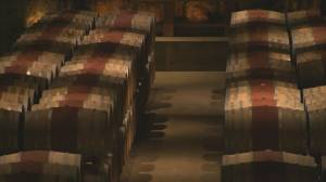 Kelowna man loses grievance to be rehired by winery