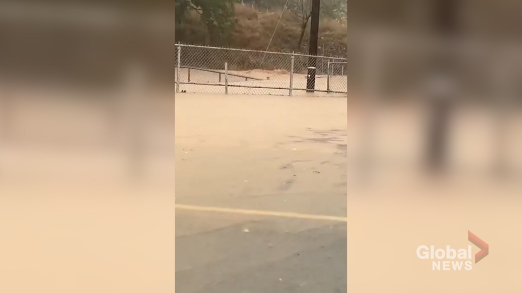 Click to play video 'Hurricane Zeta leaves parts of Louisiana, North Carolina battered'