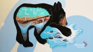Legacy book showcasing Edmonton LRT murals