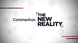 Coronavirus: The New Reality – May 24