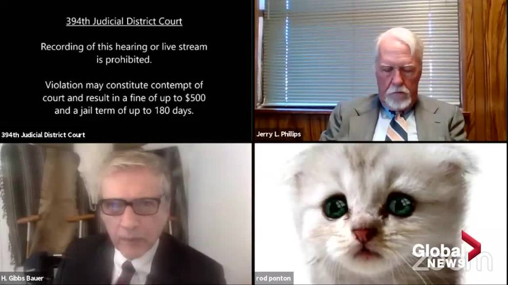 Click to play video 'Texas judge issues Zoom warning after lawyer struggles with cat filter'