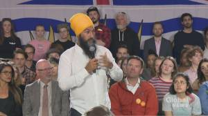 Federal Election 2019: Singh says he'll introduce mixed-member proportional representation 'without a referendum'