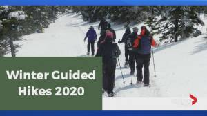 Hike Nova Scotia launches Winter Guided Hike Series