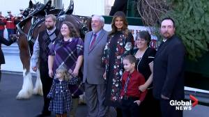Melania Trump welcomes 2019 White House Christmas tree (02:08)