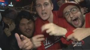 Fans celebrate after Washington Nationals win World Series