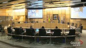 Regina faces backlash over proposed energy motion (02:00)