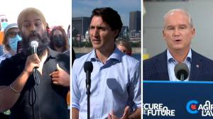 Federal leaders weigh in on Alberta's COVID-19 crisis (01:59)
