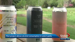 Drinking in some Edmonton parks officially launches Friday (02:23)
