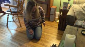 More Smiths Falls residents speak out about their missing cats fearing they may have been stolen (01:58)