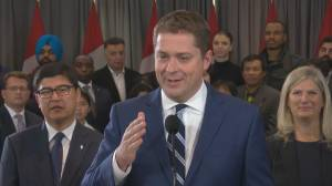 Federal Election 2019: Scheer declines to comment on accusations Conservative Party hired Warren Kinsella to spread misinformation