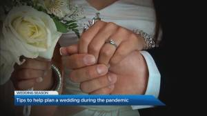 Tips for planning a wedding during the pandemic (03:41)