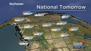 Edmonton weather forecast: Feb 7 (03:50)