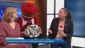 Continuing the Raptors championship celebration