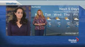 Global News Morning weather forecast: April 12, 2021 (01:07)