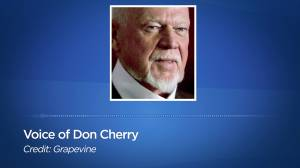 Don Cherry launches new podcast