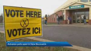 Advance polls open for New Brunswick municipal election (02:01)