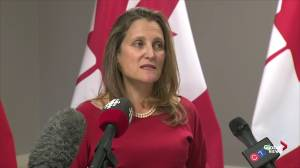 Freeland formally announces appointment of Dominic Barton as ambassador to China