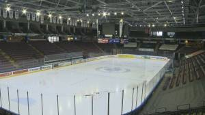 BCHL hoping to return to play (02:04)