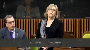 Coronavirus outbreak: Elizabeth May says parliamentarians cannot become vectors for COVID-19