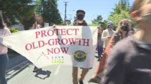 Hundreds protest logging rules on Vancouver Island (02:00)
