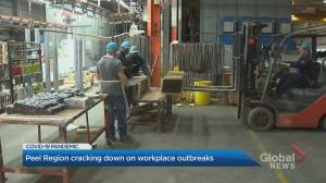 Peel Region to shut down workplaces with 5 or more covid cases (01:40)