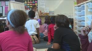 Toronto Public Health criticizes school board over large class sizes