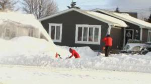 Recovery, clean-up efforts underway after N.L. storm