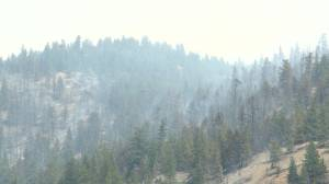 Hedges Butte out-of-control wildfire at 230 hectares (02:22)