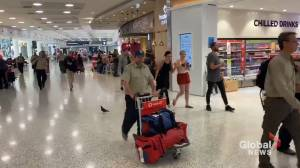 Canadian firefighters arrive in Australia to help battle wildfires