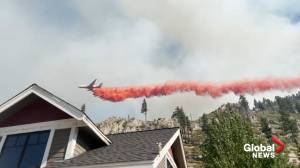Tamarack Fire in northern California grows to over 65,000 acres (00:36)