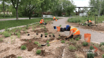 Get some cash back for planting a rain garden in Peterborough