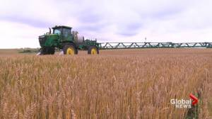 Saskatchewan producers calling on agriculture businesses for support (01:13)