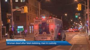 Man charged with 1st-degree murder in stabbing of woman at downtown Toronto bar (01:56)
