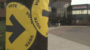 Candidates make final push for votes in Edmonton Strathcona riding