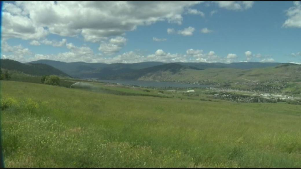 Click to play video: 'B.C. government declares level 3 drought for the Okanagan'
