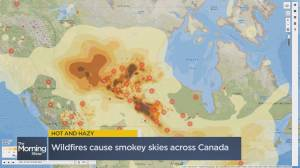 Wildfires cause smoky skies across Canada (03:06)