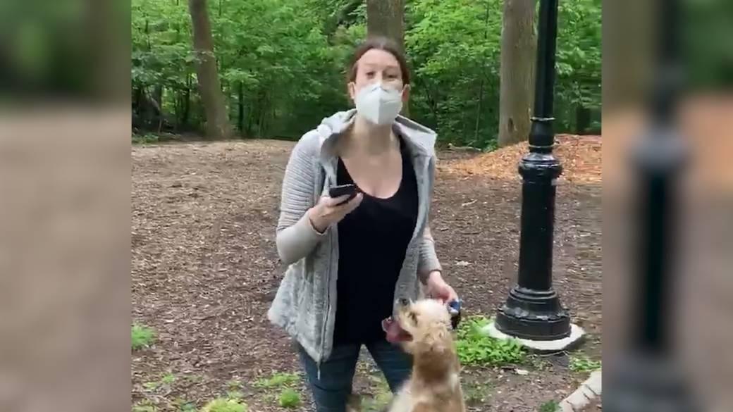 Dog Park Thumb