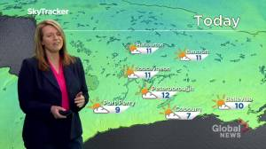 Peterborough Regional Weather Update: May 5, 2020