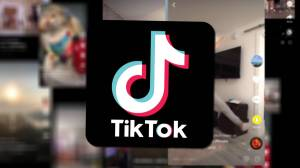Expert urges Canadians to be wary of TikTok app